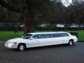 lincoln_limousine_gal_1