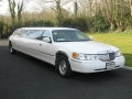 lincoln_limousine_gal_4